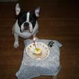 1才のお誕生日、おめでとう!!